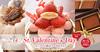 バレンタイン限定ケーキ&チョコ